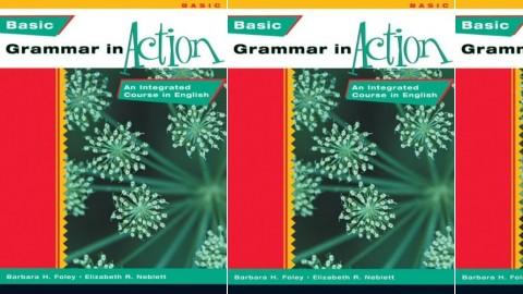 Basic Grammar in Action (New Grammar in Action)