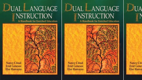 Dual Language Instruction