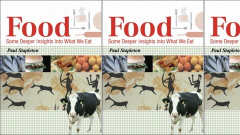 Food - Some Deeper Insights into What We Eat