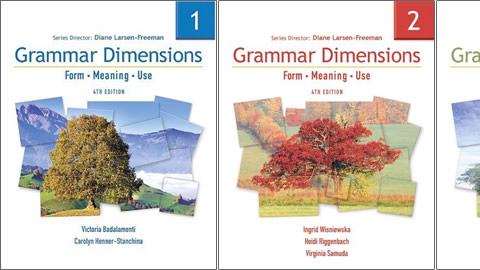 Grammar Dimensions Fourth Edition