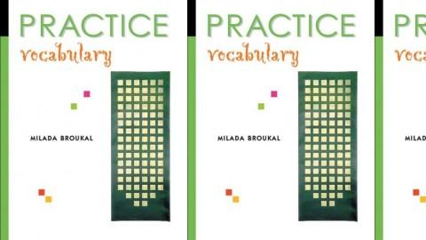 Practice Vocabulary