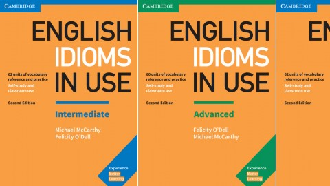 English Idioms in Use Second edition