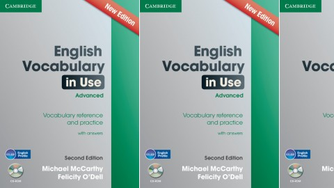 English Vocabulary in Use: Advanced Second edition