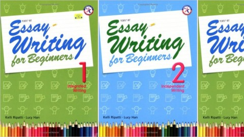 Essay Writing for Beginners