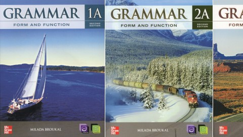 Grammar Form and Function 2nd Edition