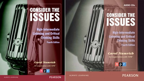 Issues Series: Consider the Issues (4th Edition)