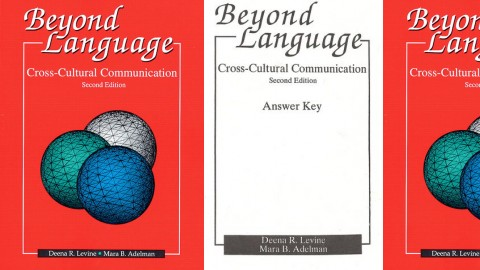 Beyond Language: Cross-Cultural Communication