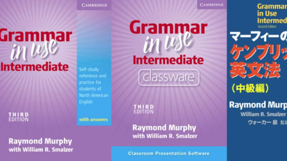 Grammar in Use Intermediate: Third Edition