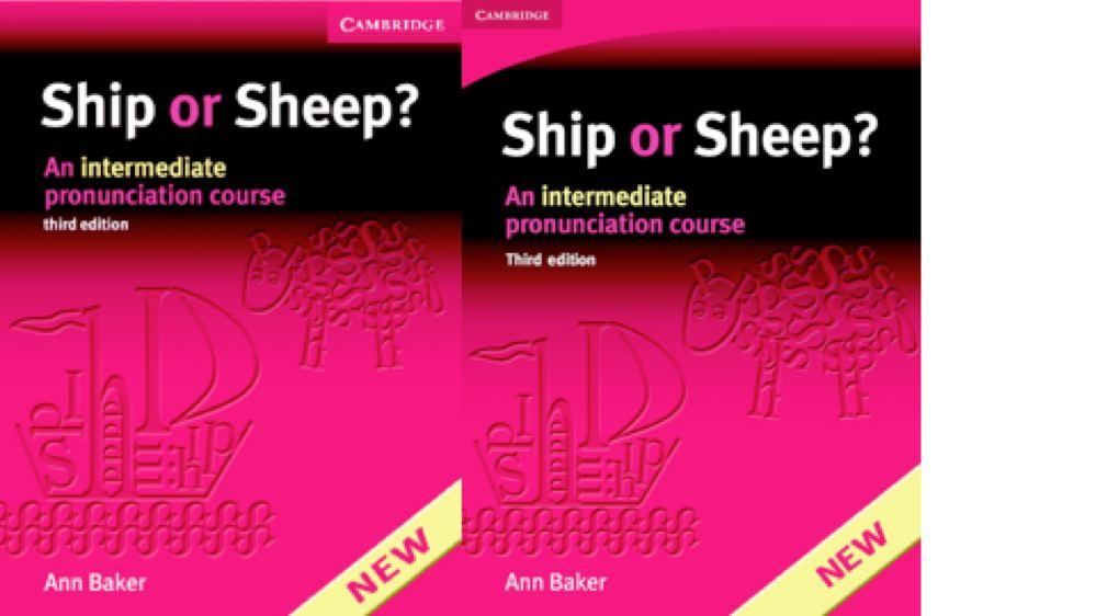 Ship or Sheep