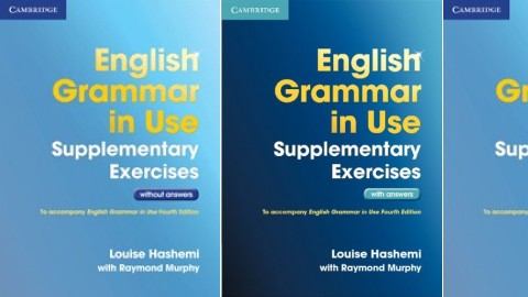 English Grammar in Use Supplementary Exercises 3rd Edition