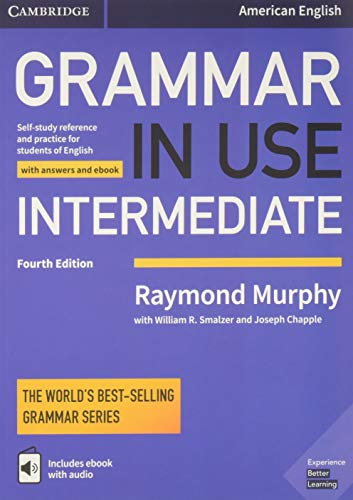 Grammar in Use Intermediate: 4th Edition