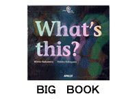 Big book (大型絵本) - アプリコットキッズ英語絵本